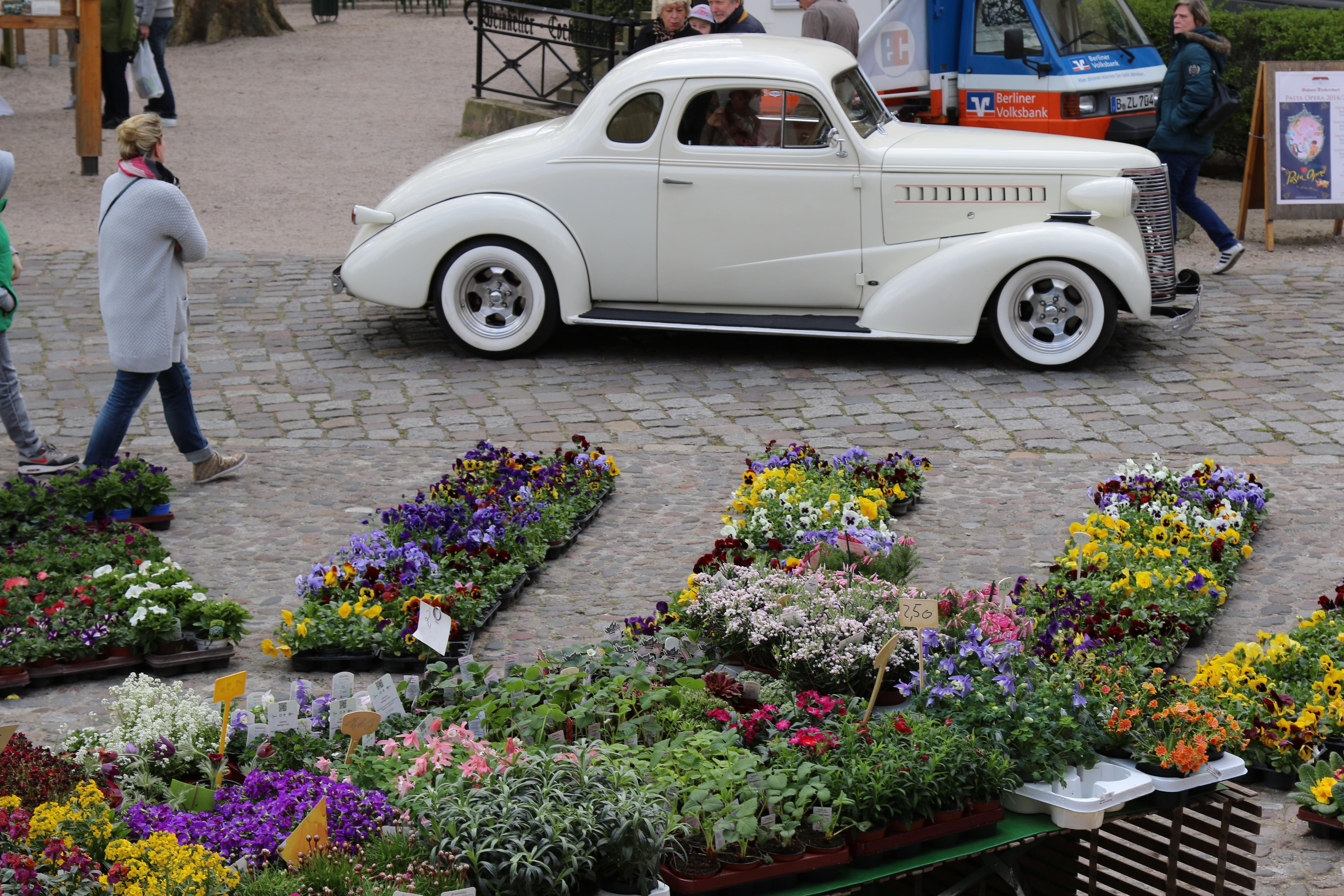 Gartenschau, British Days, Oldtimer